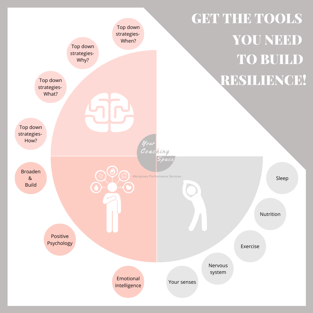 CORRECTED Visual 2. – Get the tools you need to build resilience! (1)